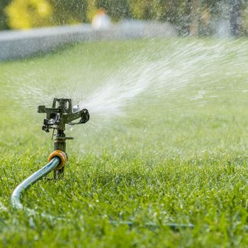 The Best Ways To Conserve Water On Landscaping